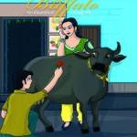 Affair With The Buffalo